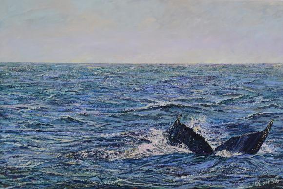 Ocean Fluke