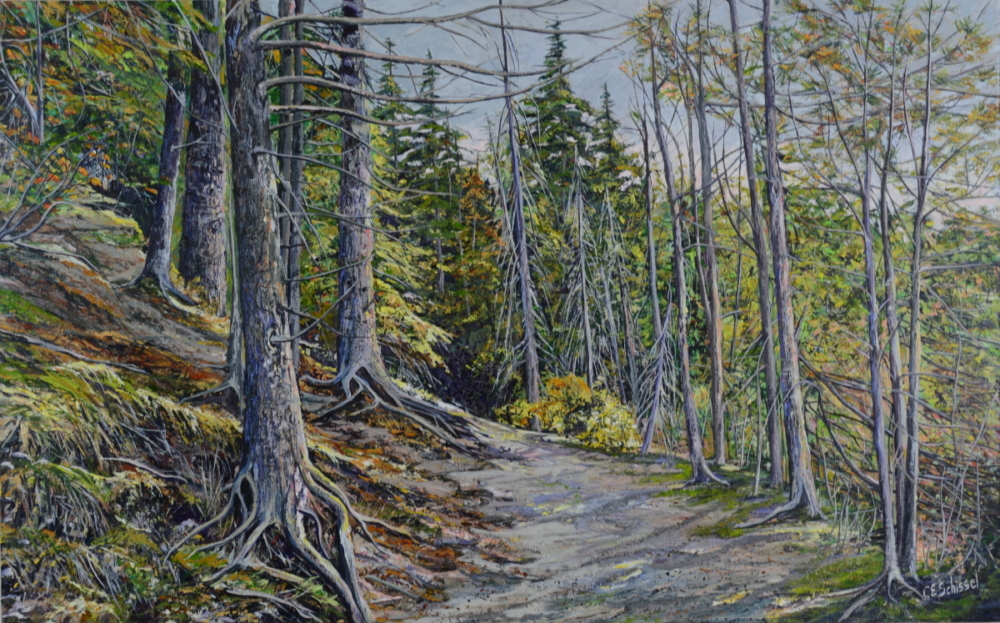 Algonquin Hillside Trail - SOLD