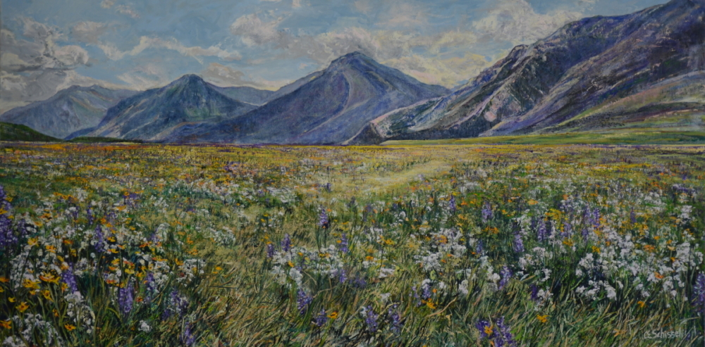 Waterton Park Field - SOLD
